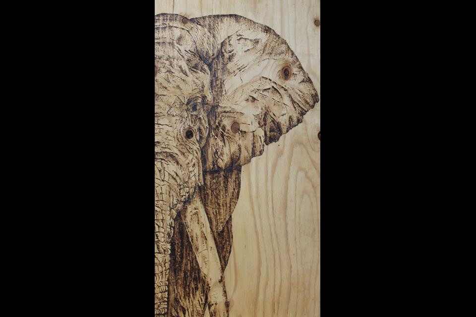 """Wooden Ivory"" by Laura Scheving"