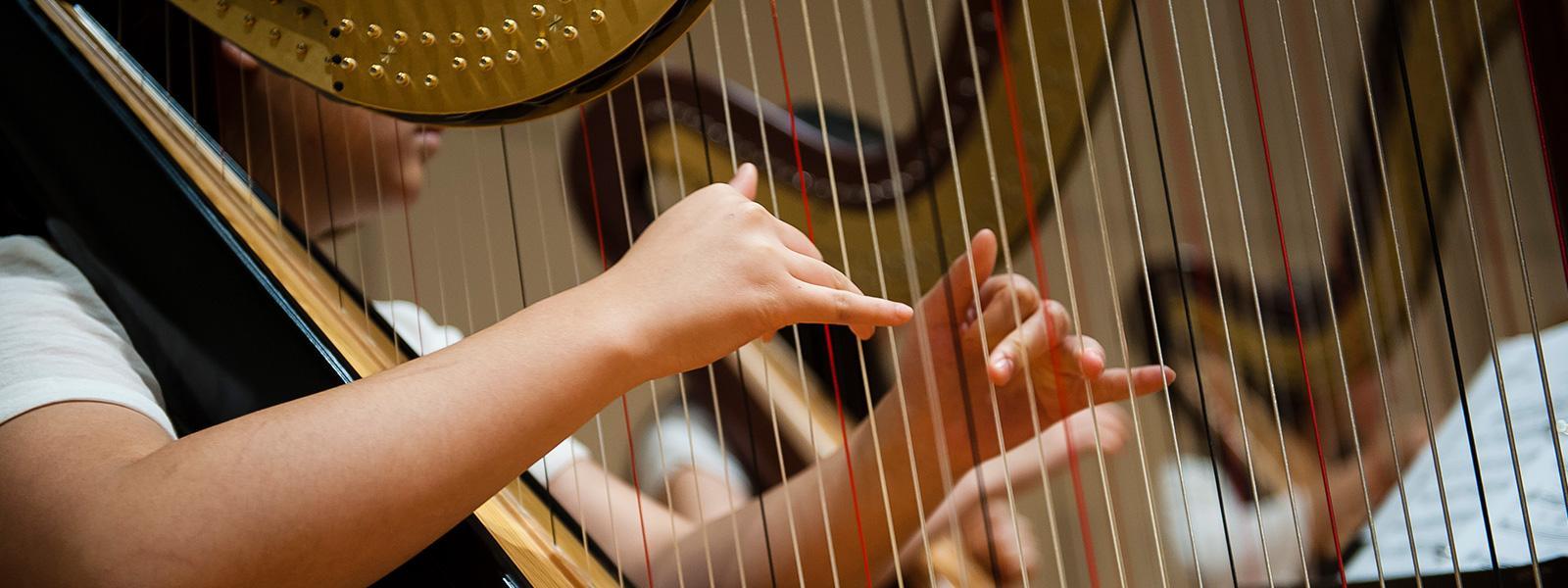Harp Summer Intensive >> LEARN MORE
