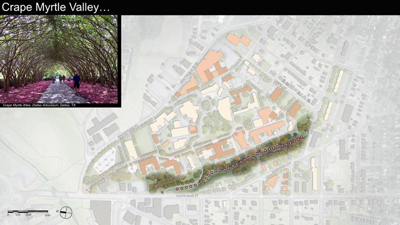 A second spine, known as Kudzu Valley, is transformed through simple interventions and landscaping to become an integral component of the city's Strollway system.