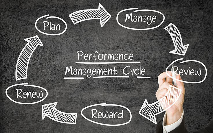 Performance Mangement Cycle