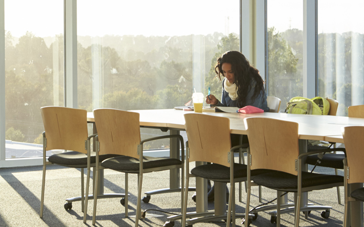 Person studying in the Library