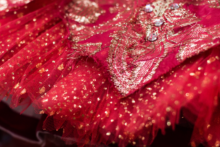 Hand-sewn jewels make the costumes sparkle